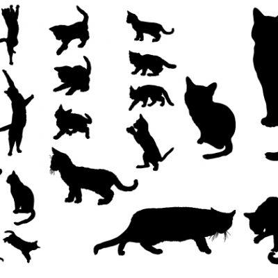 Letterpress Cats plate